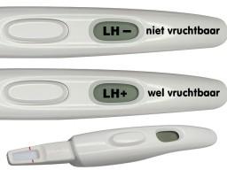 Met de ovulatietest vind je de vruchtbare dagen